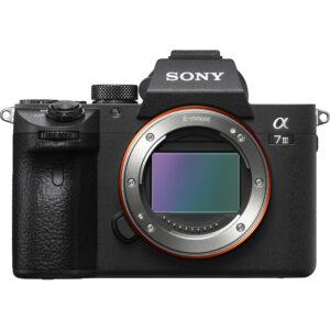 Sony a73 1